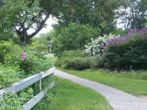 Pathway 6
