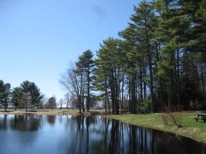 Pond Expanse